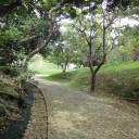 識名園内 石畳の道。