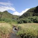 タチジャミへ 滝が小川が続く