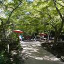 宮島_紅葉谷公園